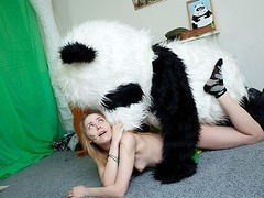 What's the most excellent way to talk the panda bear to join the army? Maybe a sexy breasty teenage hottie in a military outfit can do that? That Babe was very stern and tried to train him to march and to work out. But the panda bear's got smth else on his mind! This Chab's gonna train the cutie to have fun with sex! And as pretty soon as the sexy chick saw this shiny large dong of his, this sweetheart forgot all about the army and plunged into fun fucking with the horny bear. Watch, the good old slogan `Make love not war` still works for chicks :)